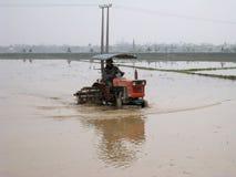 Gli agricoltori del Vietnam lavora in un giacimento del riso con il trattore Fotografia Stock Libera da Diritti