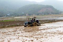 Gli agricoltori del Vietnam lavora in un giacimento del riso con il trattore Fotografie Stock