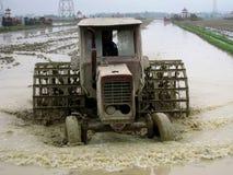 Gli agricoltori del Vietnam lavora in un giacimento del riso con il trattore Fotografia Stock