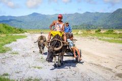 Gli agricoltori filippini che guidano un'acqua intimoriscono il carretto lungo il campo vulcanico Immagini Stock Libere da Diritti