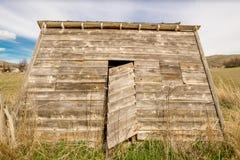 Gli agricoltori hanno sparso su un'azienda agricola rurale ad un angolo molto acuto Immagine Stock Libera da Diritti