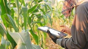 Gli agricoltori portano la tecnologia per aiutare nell'agricoltura stock footage