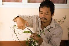 Gli agricoltori sono piante dell'analisi Immagini Stock Libere da Diritti