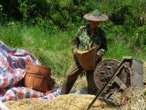Gli agricoltori stanno lavorando Fotografia Stock Libera da Diritti