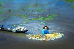 Gli agricoltori stanno pulendo i gigli dopo il raccolto sotto le paludi nella stagione dell'inondazione Fotografie Stock