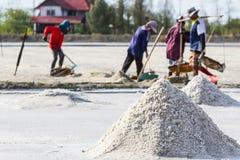 Gli agricoltori stanno raccogliendo il sale nei giacimenti del sale Fotografia Stock