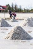 Gli agricoltori stanno raccogliendo il sale nei giacimenti del sale Fotografia Stock Libera da Diritti
