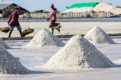 Gli agricoltori stanno raccogliendo il sale nei giacimenti del sale Fotografie Stock Libere da Diritti