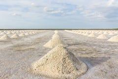 Gli agricoltori stanno raccogliendo il sale nei giacimenti del sale Immagini Stock Libere da Diritti