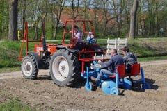 Gli agricoltori su un trattore stanno piantando le lampadine nel suolo nel Noordoostpolder, Paesi Bassi Immagini Stock Libere da Diritti