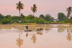 Gli agricoltori tailandesi che lavorano con un aratro tenuto in mano del motore in un riso sistemano Immagine Stock