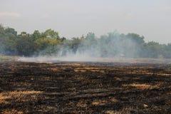 Gli agricoltori tailandesi stanno bruciando la paglia Immagine Stock Libera da Diritti