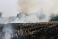 Gli agricoltori tailandesi stanno bruciando la paglia Fotografia Stock Libera da Diritti