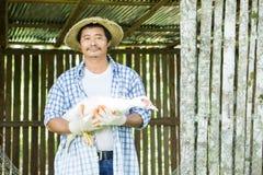 Gli agricoltori tailandesi stanno prendendo la cura di produzione agricola Immagini Stock Libere da Diritti