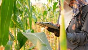 Gli agricoltori usano la tecnologia per aiutare le informazioni agricole record archivi video