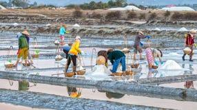 Gli agricoltori versano il sale nelle pentole del sale Fotografia Stock