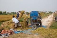 Gli agricoltori vietnamiti del nord hanno messo il raccolto in thrasher Fotografie Stock Libere da Diritti