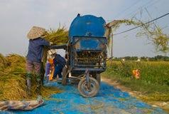 Gli agricoltori vietnamiti del nord hanno messo il raccolto in thrasher Fotografia Stock