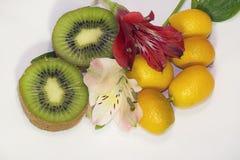 Gli agrumi variopinti con i fiori variopinti si chiudono su nel sole Fotografia Stock Libera da Diritti