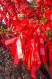Gli alberi alti completamente è decorato con i nastri rossi molti nastri rossi legati agli alberi l'asia Fotografie Stock