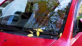 Gli alberi di autunno riflessi nei vetri di un'automobile rossa, foglie gialle cadono sull'automobile video d archivio
