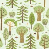 Gli alberi differenti coniferi e decidui della foresta dell'estate si sviluppano su un fondo verde Fra loro, i funghi, le bacche  illustrazione di stock
