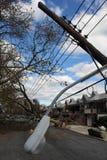 Gli alberi ed i pali elettrici hanno ritenuto giù alla terra Immagini Stock