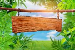 Gli alberi ed il cielo verdi della pianta della foglia si appannano il fondo Fotografia Stock Libera da Diritti