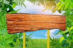 Gli alberi ed il cielo verdi della pianta della foglia si appannano il fondo Immagine Stock Libera da Diritti