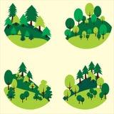Gli alberi forestali ed i pini hanno tagliato sotto forma di cerchio fotografia stock