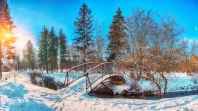 Gli alberi gelidi dell'inverno ed il vecchio ponte nevoso nell'inverno parcheggiano fotografia stock libera da diritti