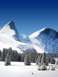 Gli alberi hanno ricoperto di neve ed alte montagne nevose Immagini Stock Libere da Diritti