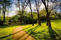 Gli alberi lungo un percorso nel lago Wilde parcheggiano in Colombia, Maryland fotografie stock