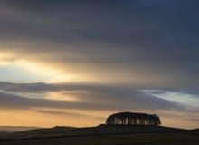 Gli alberi sull'orizzonte abbelliscono durante la siluetta vibrante del tramonto Fotografie Stock