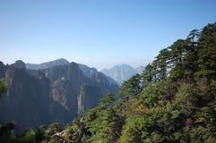 Gli alberi sulla parte superiore della montagna Immagini Stock