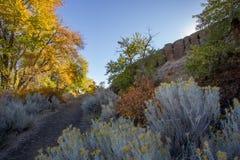 Gli alberi variopinti di autunno allineano la sporcizia che fa un'escursione il percorso del ranch della montagna della neve fotografie stock