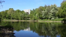 Gli alberi verdi sono riflessi brillantemente in un lago dello specchio Fondo perfetto nessuno video d archivio