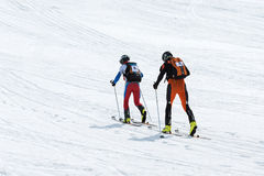 Gli alpinisti dello sci del gruppo scalano la montagna sugli sci Alpinismo dello sci di Team Race La Russia, Kamchatka Fotografie Stock Libere da Diritti