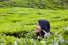 Donna felice in natura (piantagione di tè), altopiani di Cameron, Malesia. Immagine Stock