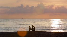 Gli amici camminano lungo la spiaggia al tramonto 003 archivi video