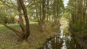 Gli amici camminano nel parco vicino il fiume Giorno di autunno Colpo liscio del carrello archivi video