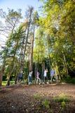 Gli amici multietnici che attraversano l'oscillazione collega la foresta Fotografie Stock