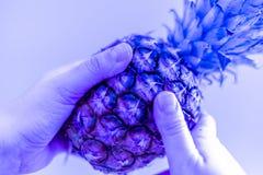 Gli ananas hanno tonificato la luce al neon stilizzata di immagine Fondo tropicale per il disegno fotografia stock