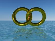Gli anelli di amore Fotografia Stock Libera da Diritti