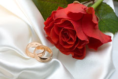 Gli anelli di cerimonia nuziale e sono aumentato Immagini Stock Libere da Diritti