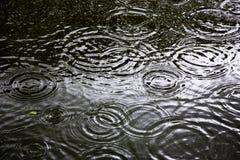 Gli anelli di un'acqua si increspano, si increspano sull'acqua Immagine Stock