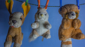 Gli animali del carrello sono appesi con una molletta da bucato Fotografie Stock