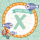 Gli animali di ABC X è pesce dei raggi x L'alfabeto inglese dei bambini Vettore Fotografia Stock Libera da Diritti