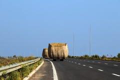Gli animali di trasporto del trattore rivoltano il fieno nel giorno soleggiato luminoso fotografia stock