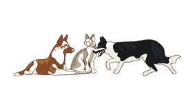 Gli animali domestici realistici progettano il vettore illustrazione di stock